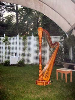 International Friendship Gardens Wedding Ceremony Harpist