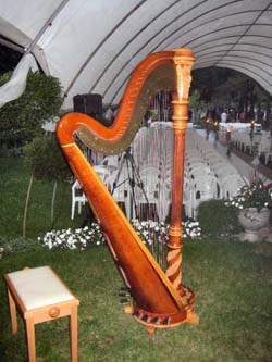 Michigan City Harpist at International Friendship Gardens Wedding
