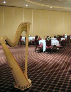 Chicago Southside Harp Player Wedding Musician