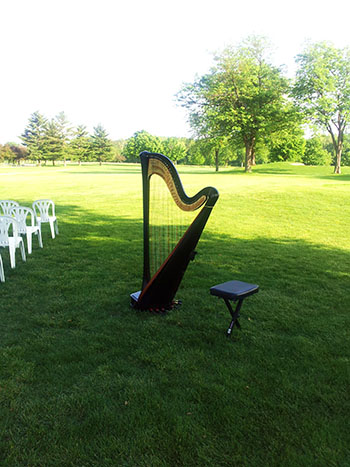 Central Illinois Live Wedding Music
