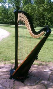 Southern Ohio Wedding Music Harp Player