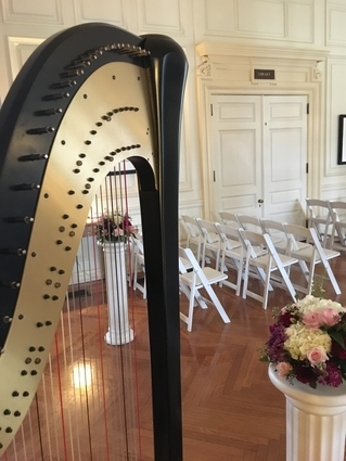 Central Illinois Harpist at an Allerton Park Wedding