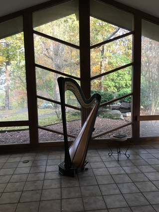 Popular Wedding Harpist