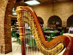 Southern Indiana Wedding Harpist