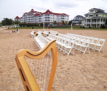 Petoskey Michigan Wedding Harpist