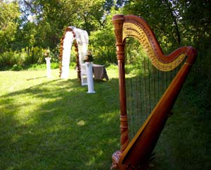 Grand Rapids Michigan Harpist