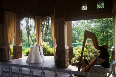 Canton Ohio Wedding Harpist - Ceremony at Gervasi Vineyard