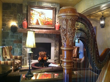 Northeast Ohio Harpist in Canton - Gervasi Vineyard
