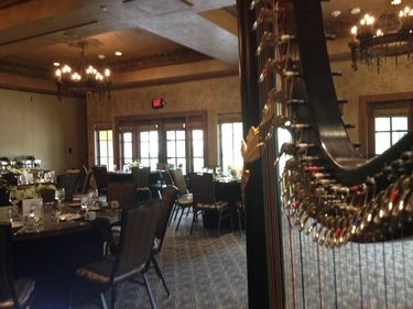 Canton Ohio Wedding Harp Music Gervasi Vineyard