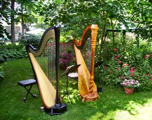 Cassopolis Michigan Wedding Harp Music
