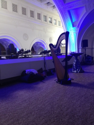 Chicago Harpist for Events at the Field Museum