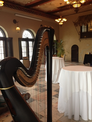Harp Player For Wedding