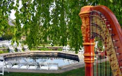 Chicago Harpist Botanic Gardens Wedding Ceremony