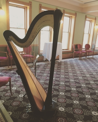 Traverse City Wedding Reception Harpist