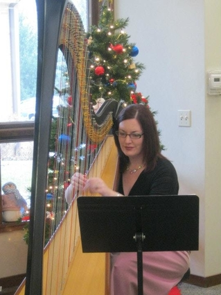 Kalamazoo Michigan Harp Player