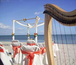 Beach Wedding Ceremony Harpist Miami Florida