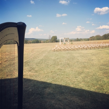 Farmington Missouri Harpist for Weddings
