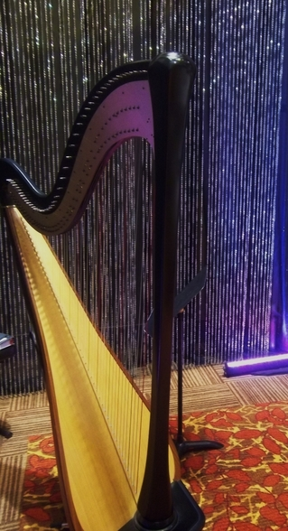 Harpist for Casino Entertainment