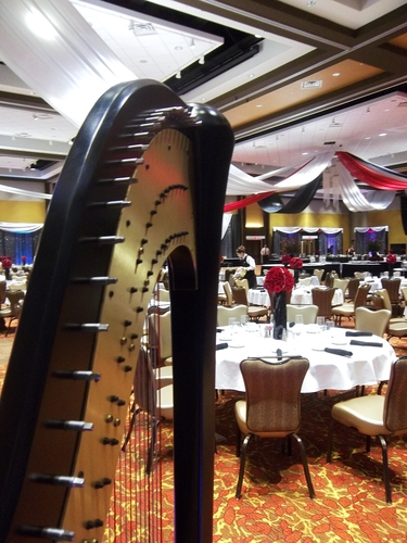 Southwest Michigan Event Harpist