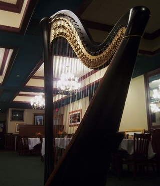 Harpist for Events in Detroit