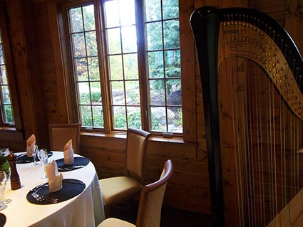 Homestead Resort Glen Arbor Musican for Weddings