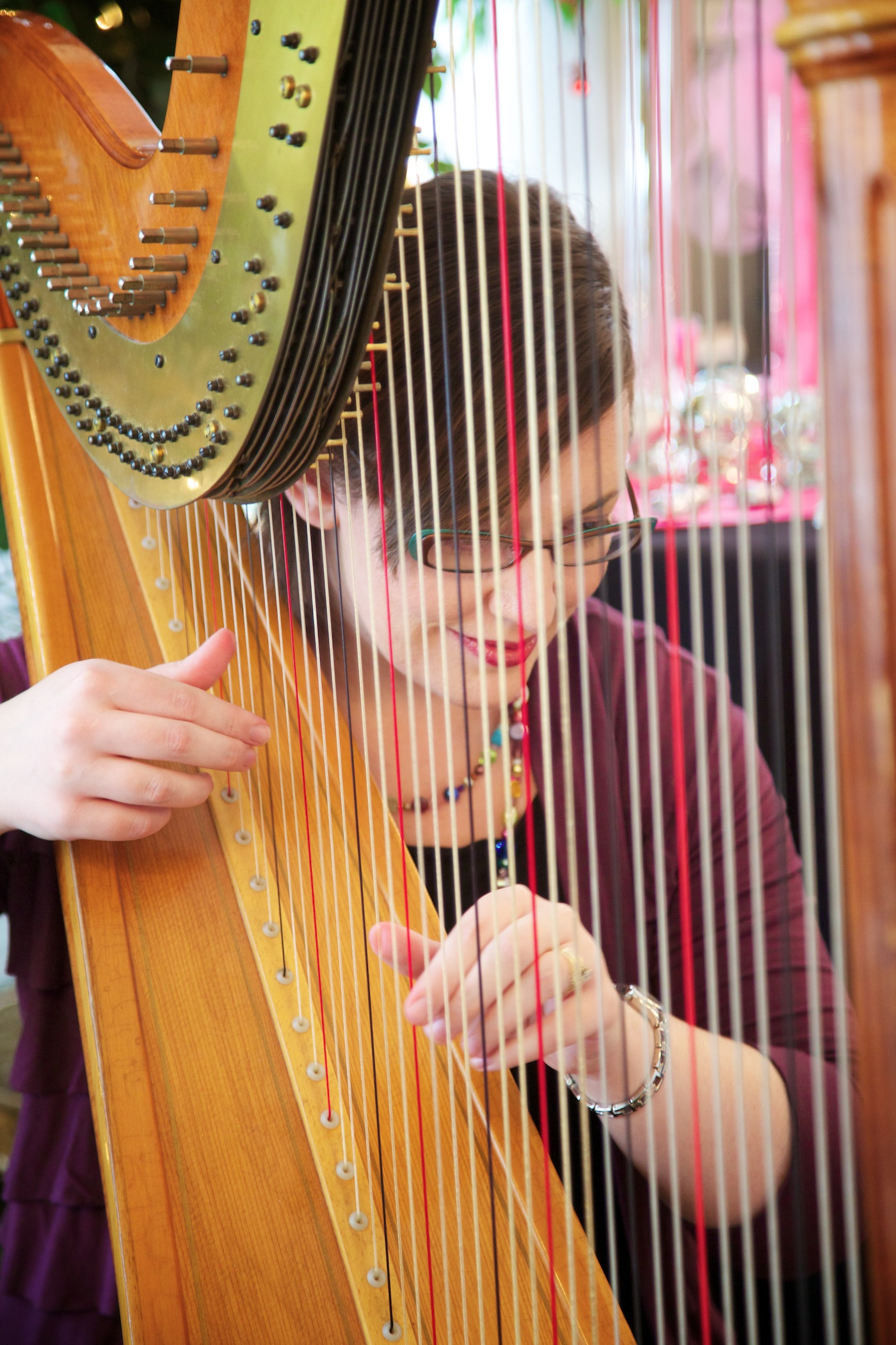 Harpist at Hamilton's Wedding Reception