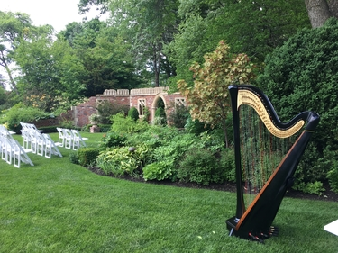 Harp Player Northwest Indiana