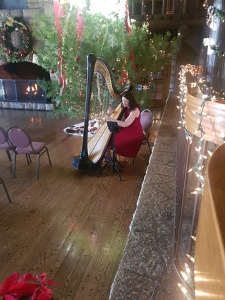 Pere Marquette Christmas Wedding