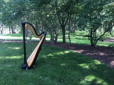 Chicago Suburbs Wedding Harpist