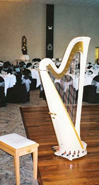 Heston Hills Wedding Reception Harp Music