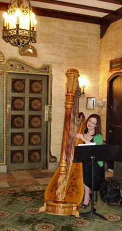 Chicago West Suburbs Harp Player for Weddings Hotel Baker