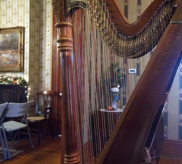 Harpist for Weddings in Indianapolis