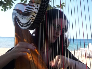 Harp Music in Bay Harbor, Northern Michigan