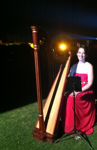 International Harpist for a Party at Umaid Bhawan Palace