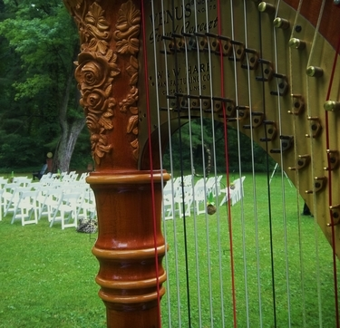 Southwest Lower Michigan Wedding Harpist