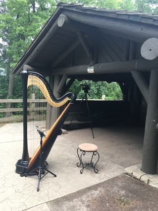 Wedding at Starved Rock State Park - Harpist for Ceremony Music