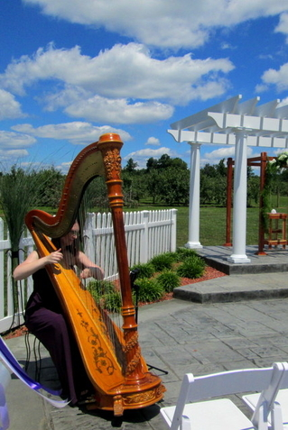 Louisville Kentucky Wedding Harpist