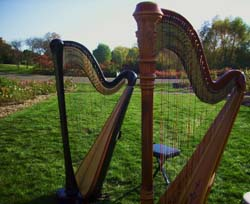 Twin Cities Wedding Harpist