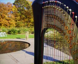 Minneapolis Wedding Harpist
