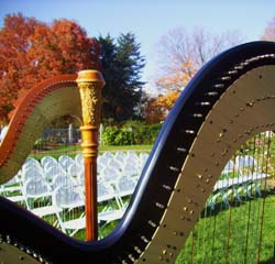 Minneapolis Wedding Ceremony Musician Harp