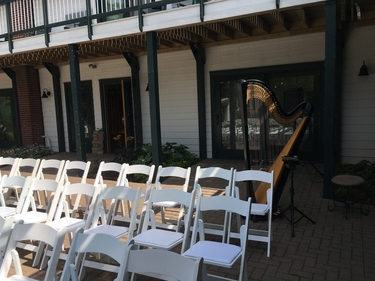 Northern Michigan Wedding Harpist