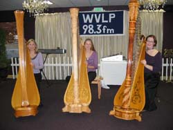 Harp Ensemble for Hire