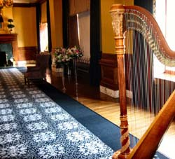 Grand Rapids Harpist for Weddings