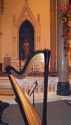 Harpist in an Orchestra Illinois