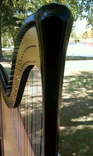 Wedding Harpist in North Central Illinois