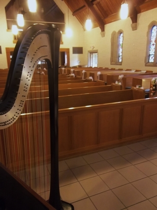 Peoria Harp Player - Wedding Music in North Central Illinois