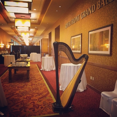 East Peoria Wedding Harpist