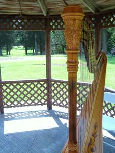 Pilcher Park Wedding Music Harpist Joliet