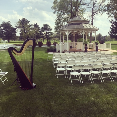 Plymouth Wedding Harpist