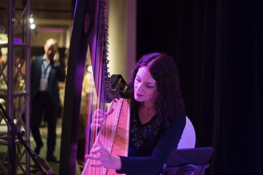 abu dhabi Wedding Harpist